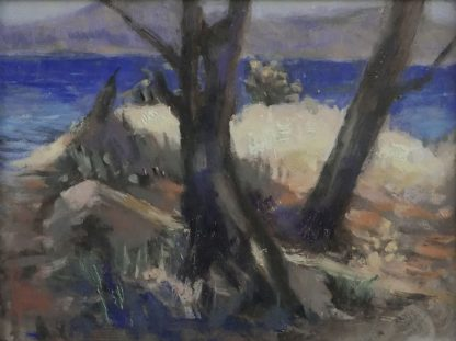 Bomen en zee te Sardinie