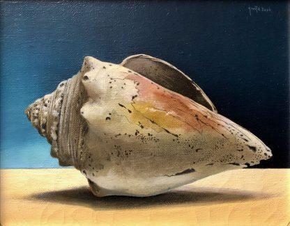 Oude schelp