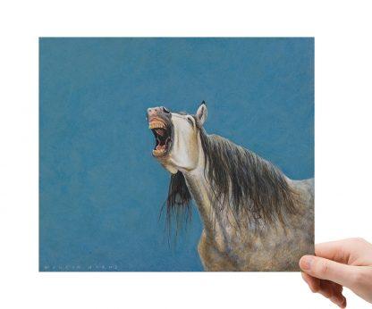 Paardenhumor 1