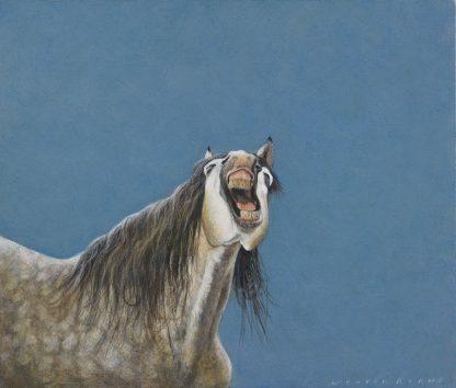 Paardenhumor 2