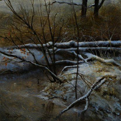Sneeuw in Het Leusveld