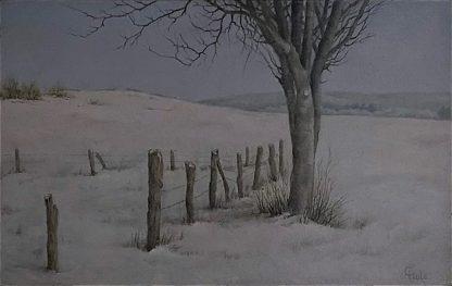 Sneeuw in Lieler 1