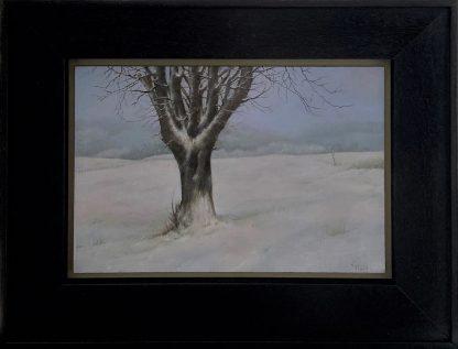 Sneeuw in Lieler 2