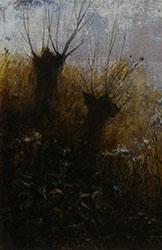 Wilgen (Erik Zwaga)